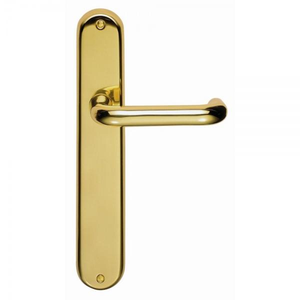 Designer Iris Polished Brass Lever on Backplate Door Handle (Bathroom Lock)