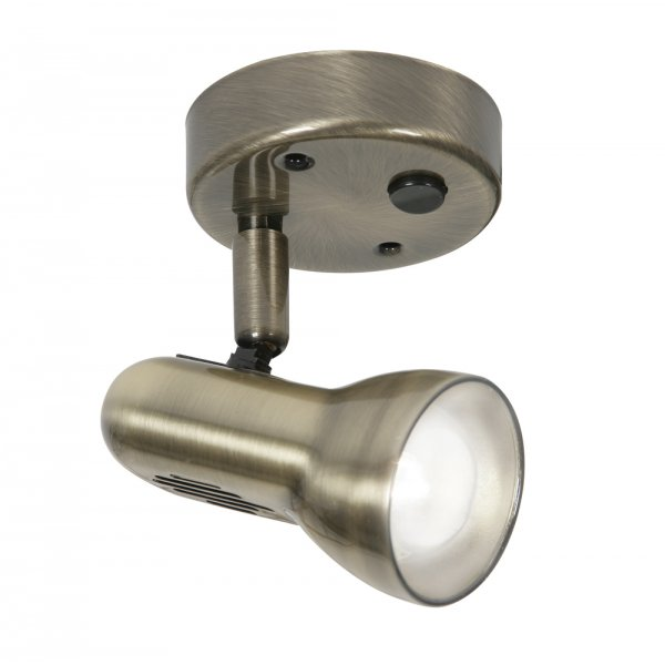 Tone 50 Antique Brass Single Switched Spotlight