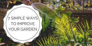 7 Simple Ways to Improve Your Garden