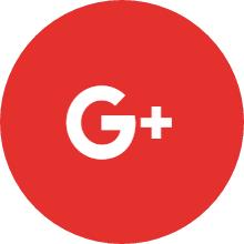 Leader Google+ Icon